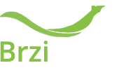 Brzinet - VPS, VDS, Dedicated Server Services